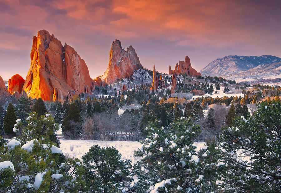Garden Of The Gods Photograph - Winter Serenity by Tim Reaves