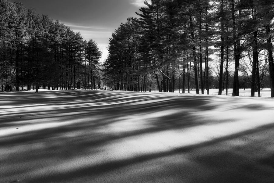 Black And White Photograph - Winter Shadows by Bill Wakeley