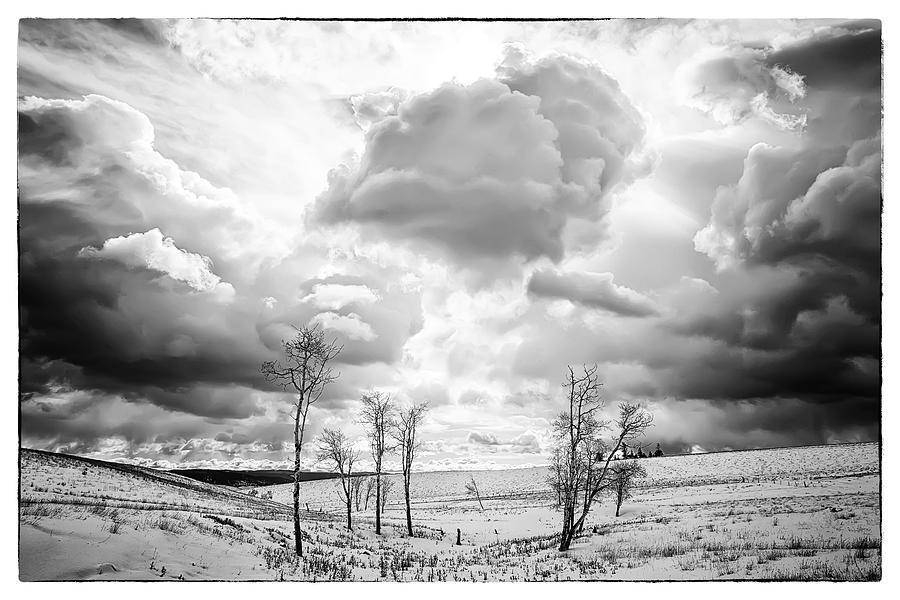 Black And White Photograph - Winter Sky Drama by Theresa Tahara