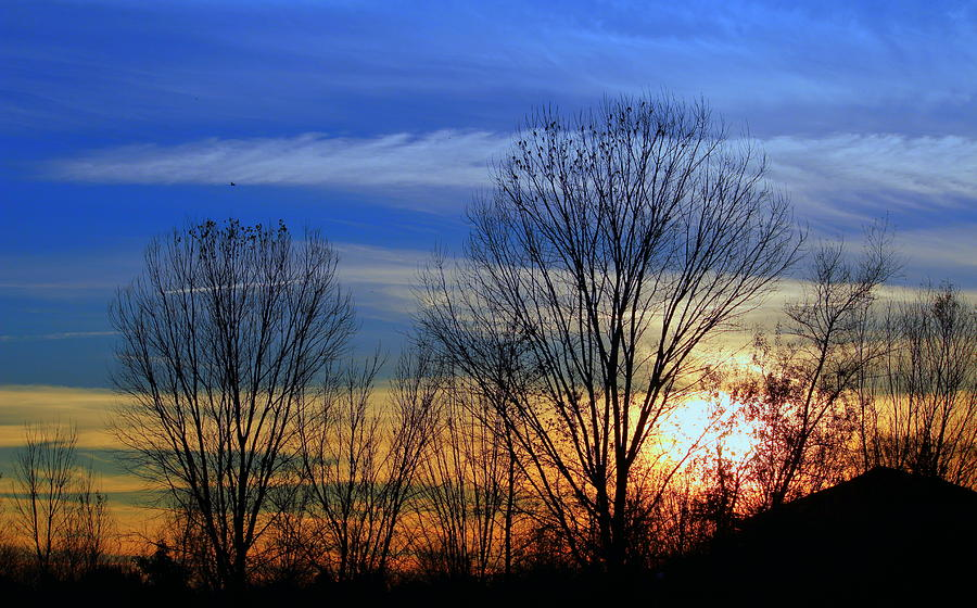 Sunset Photograph - Winter Sky by Rima Biswas