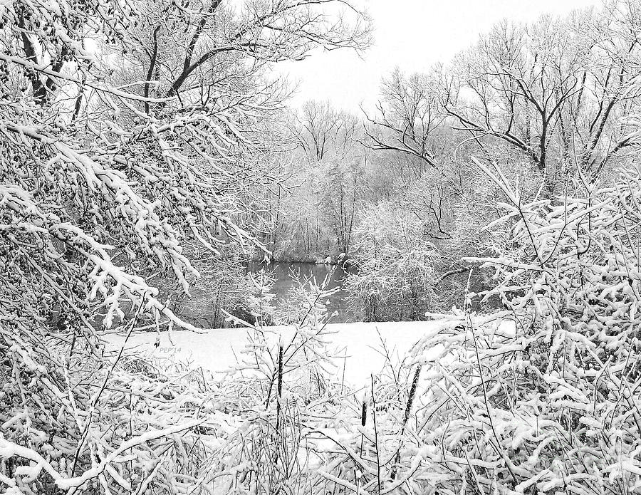 Winter Photograph - Winter Snow At Huron River by Phil Perkins