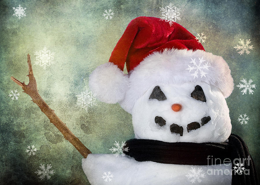 Snowman Photograph - Winter Snowman by Cindy Singleton