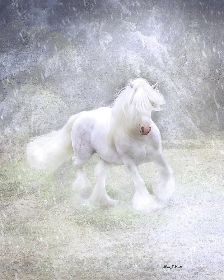 Horses Photograph - Winter Spirit by Fran J Scott