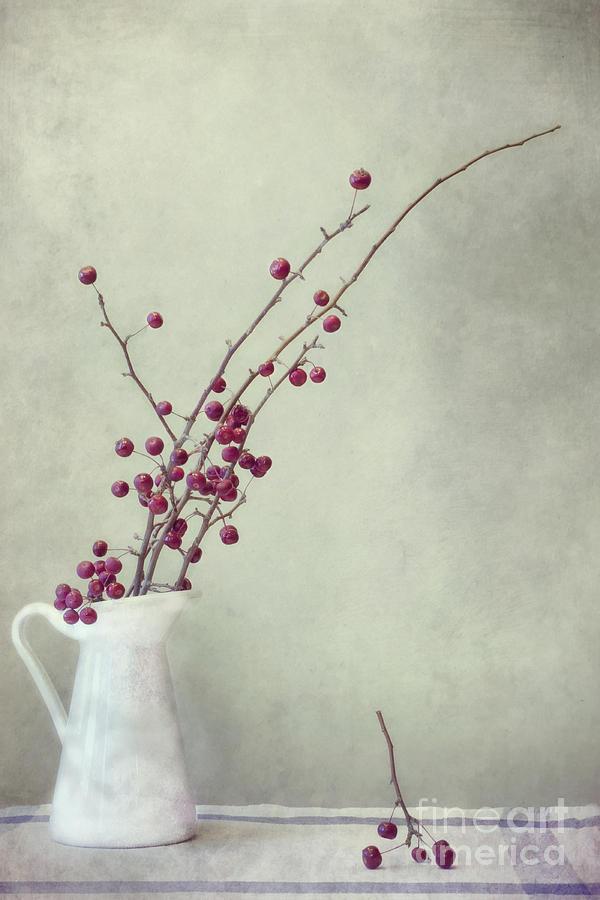 Apple Photograph - Winter Still Life by Priska Wettstein
