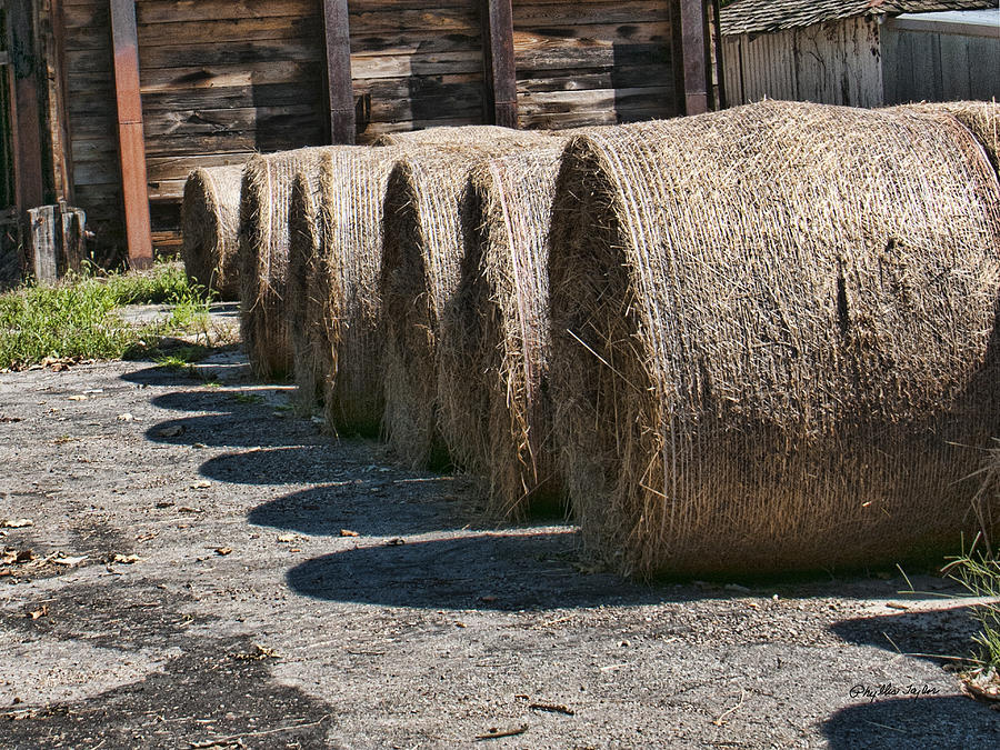 Hay Bales Photograph - Winter Storage by Phyllis Taylor