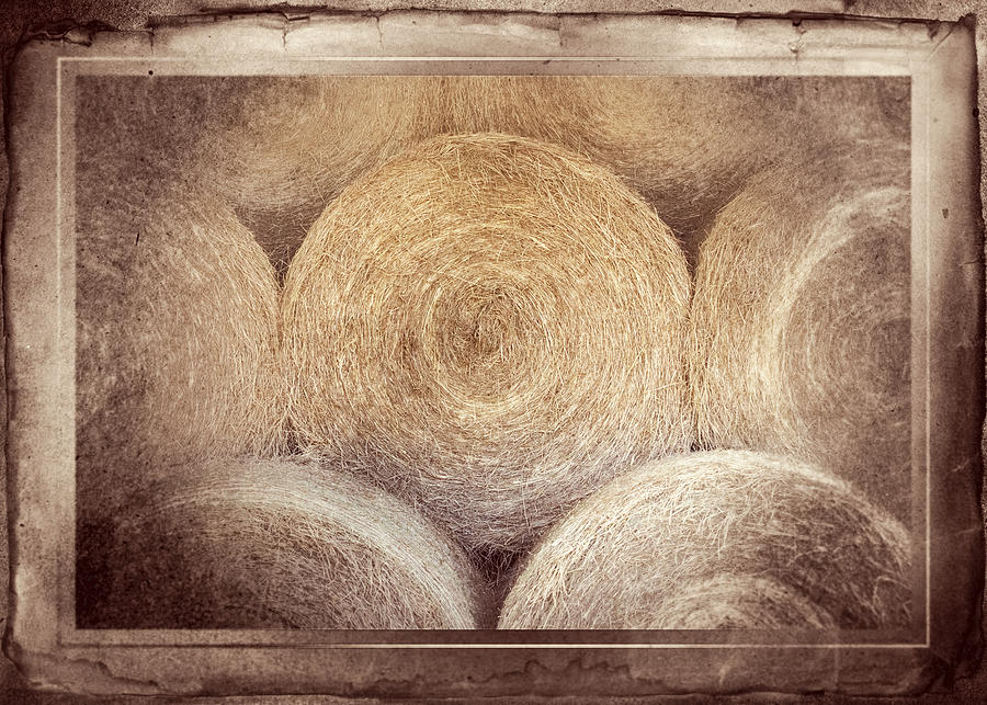 Hay Photograph - Winter Storehouse by Carolyn Marshall