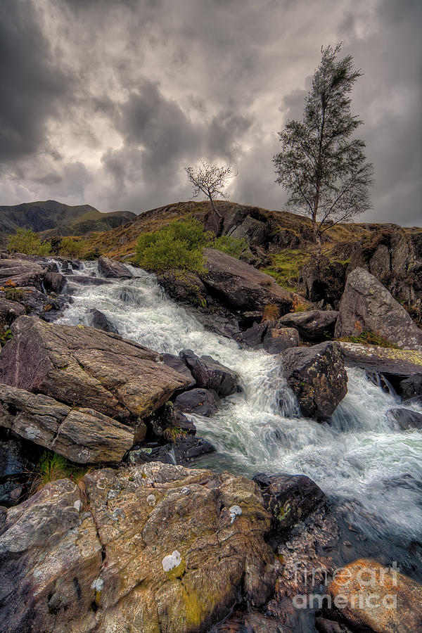 Capel Curig Photograph - Winter Stream by Adrian Evans