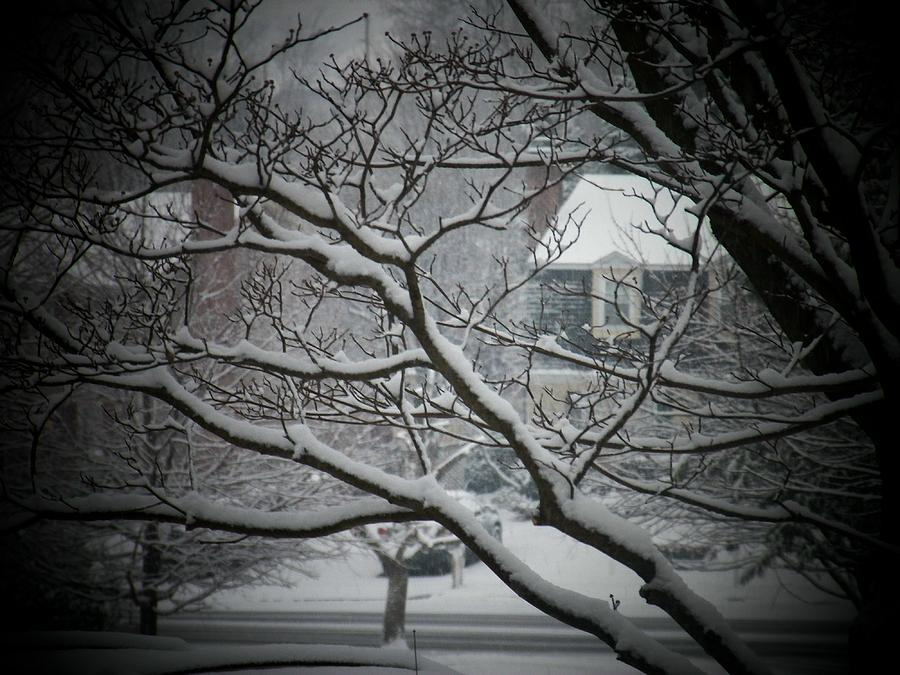 Winter Photograph - Winter Street by Joyce Kimble Smith