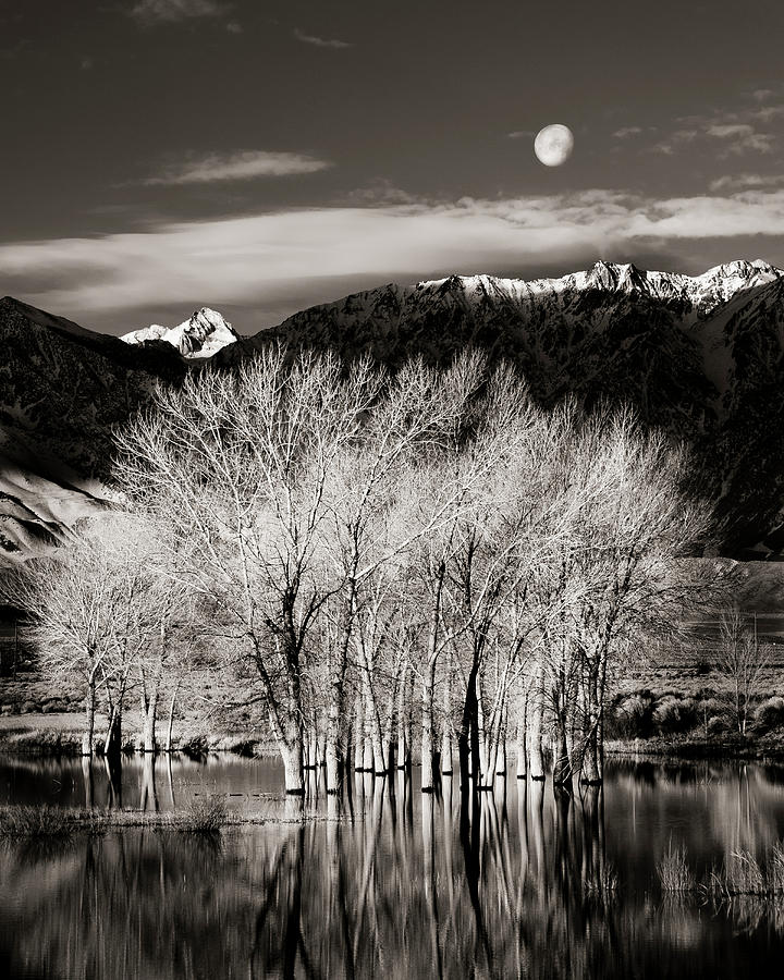 Bishop Photograph - Winter Sunrise And Moonset by Josh Miller