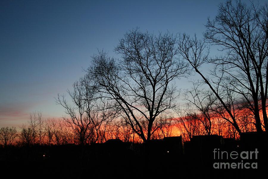 Winter Photograph - Winter Sunset by Karen Adams