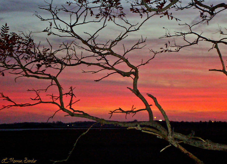 Winter Sunset Photograph by Lisa Merman Bender