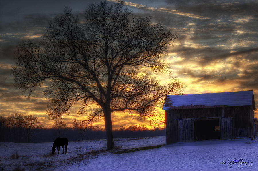 Winter Photograph - Winter Sunset by Skip Tribby