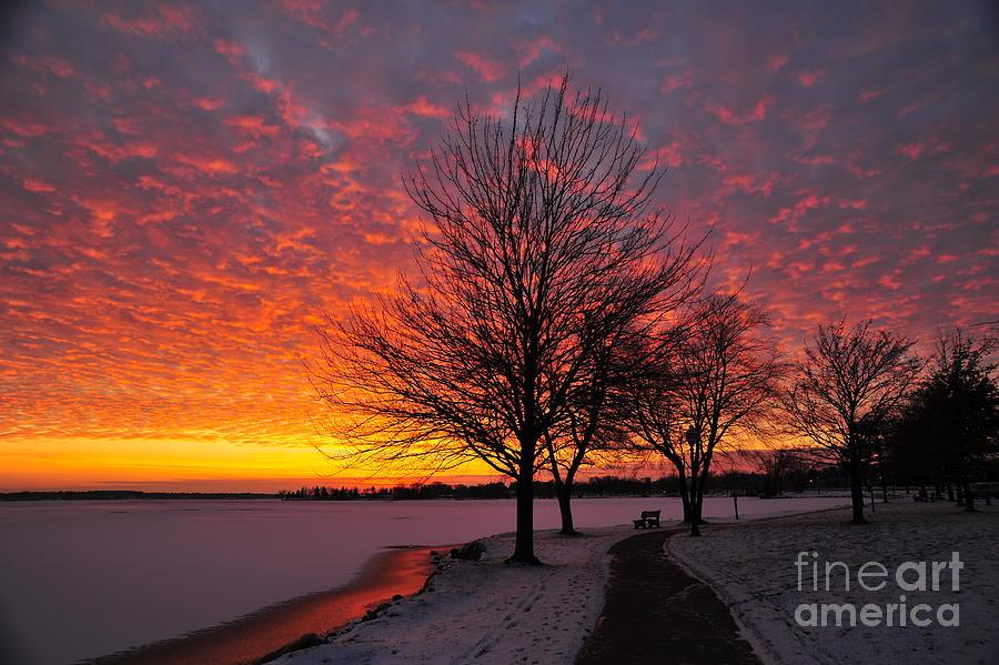 Winter Photograph - Winter Sunset by Terri Gostola
