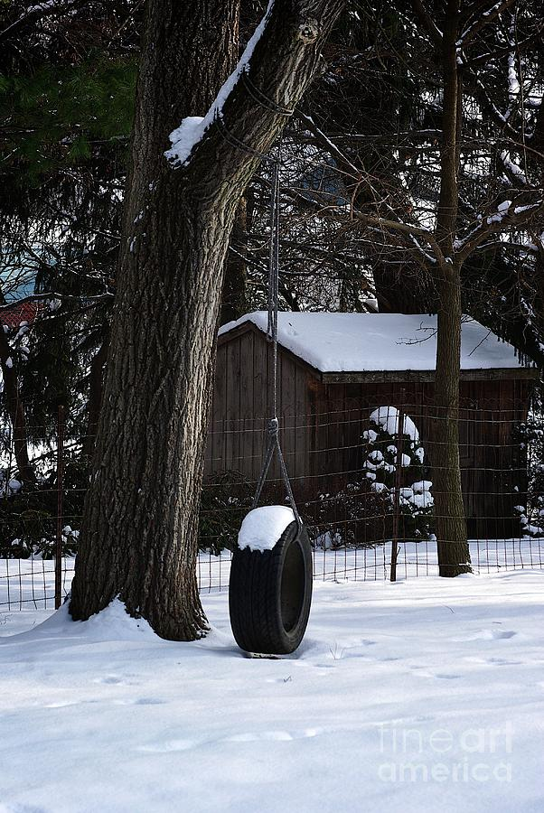Winter Tire Swing by Frank J Casella