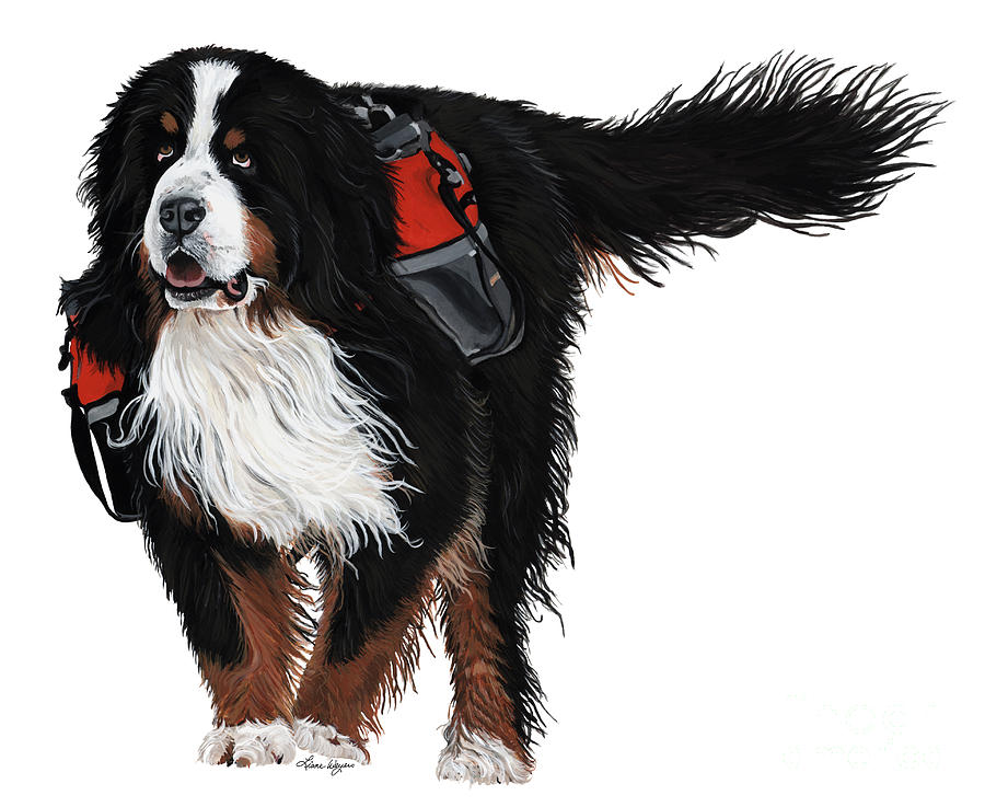 Bernese Mountain Dog Painting - Winter Trails by Liane Weyers