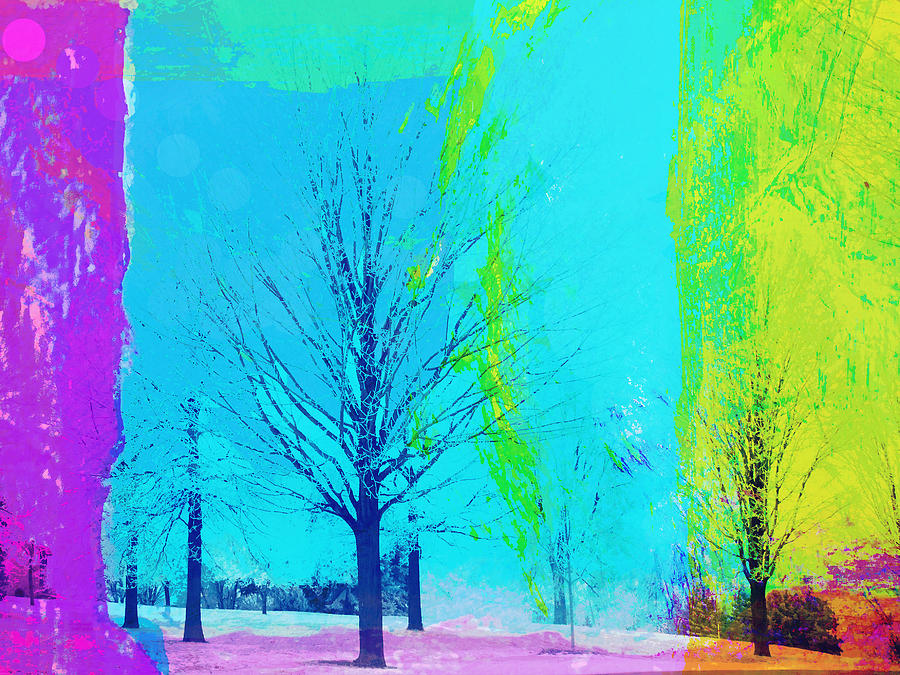 Trees Digital Art - Winter Trees by Susan Stone