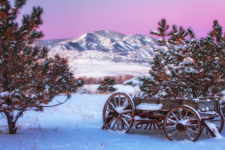 Winter Wagon Photograph