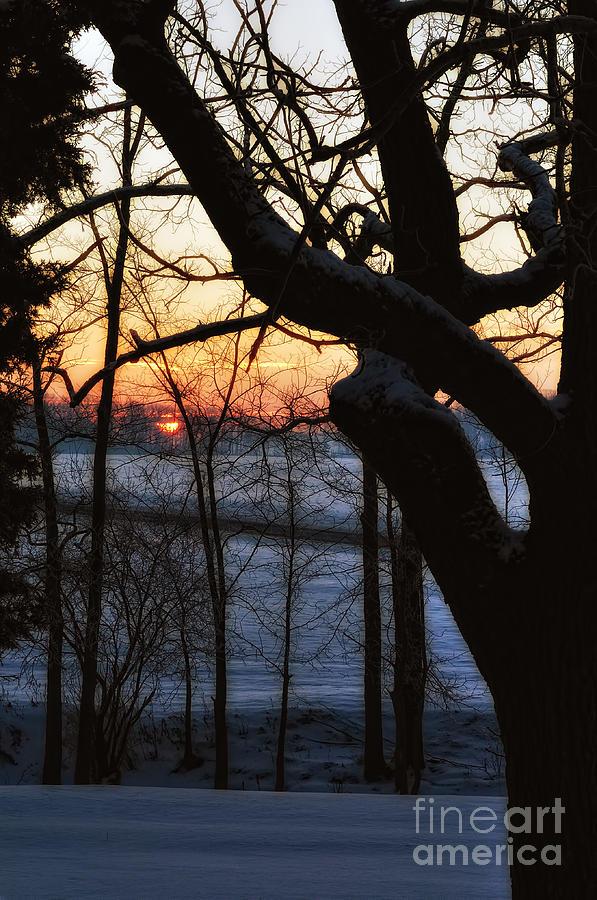 Winter Wake UP by Pamela Baker