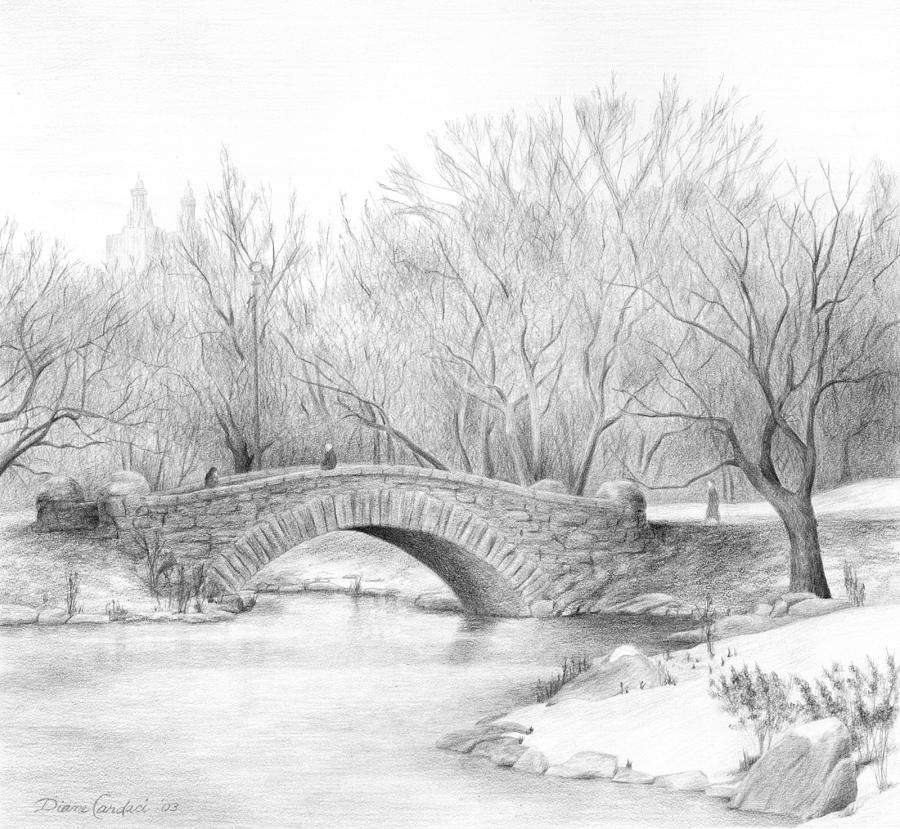 Landscape Drawing - Winter Walk by Diane Cardaci
