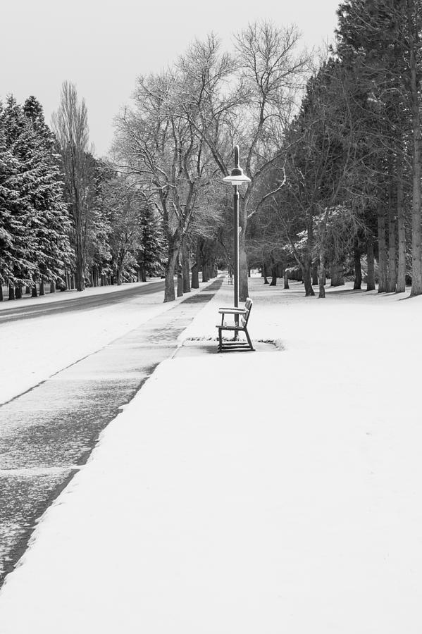 Sidewalk Photograph - Winter Walk by Fran Riley