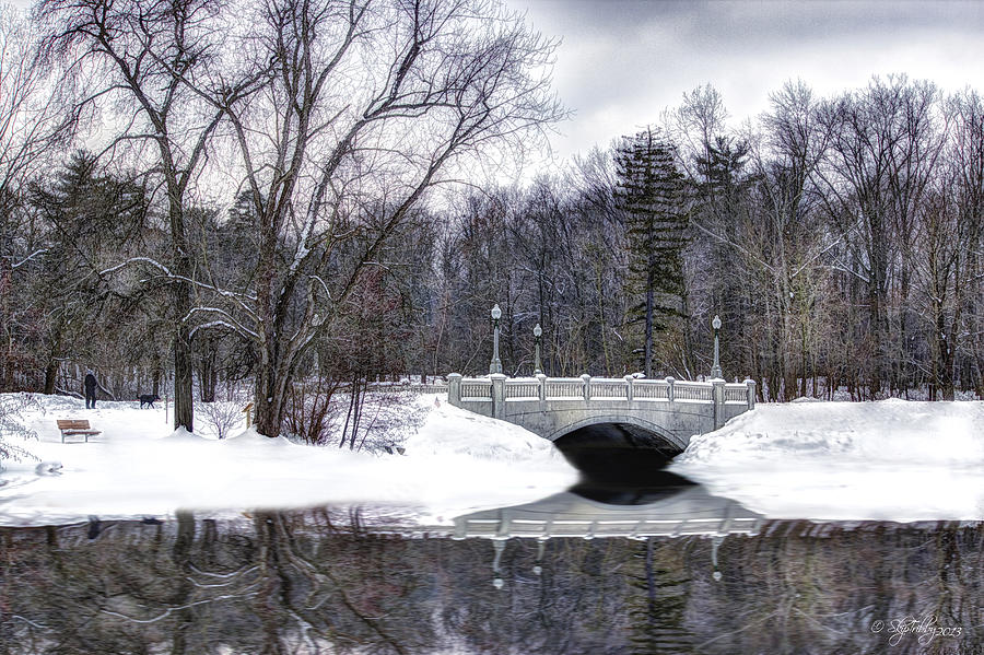 Winter Photograph - Winter Walk by Skip Tribby