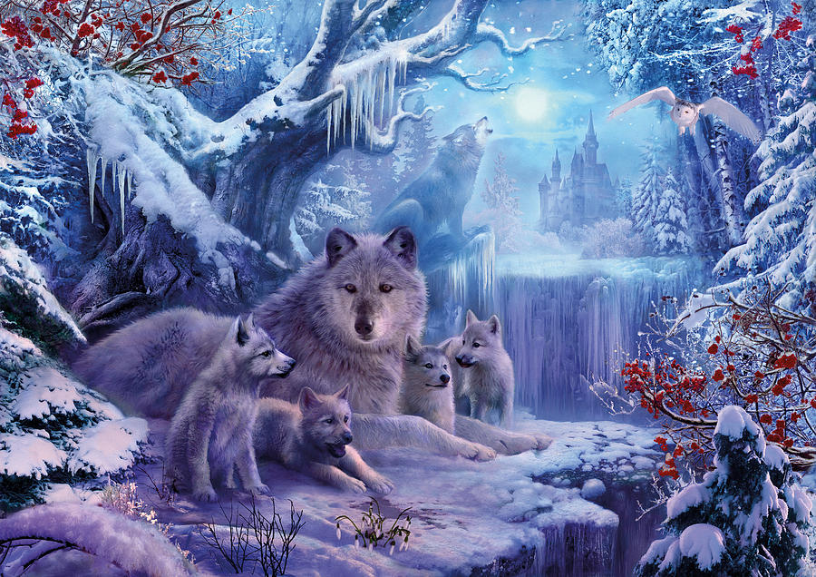 Winter Wolves Photograph by MGL Meiklejohn Graphics Licensing