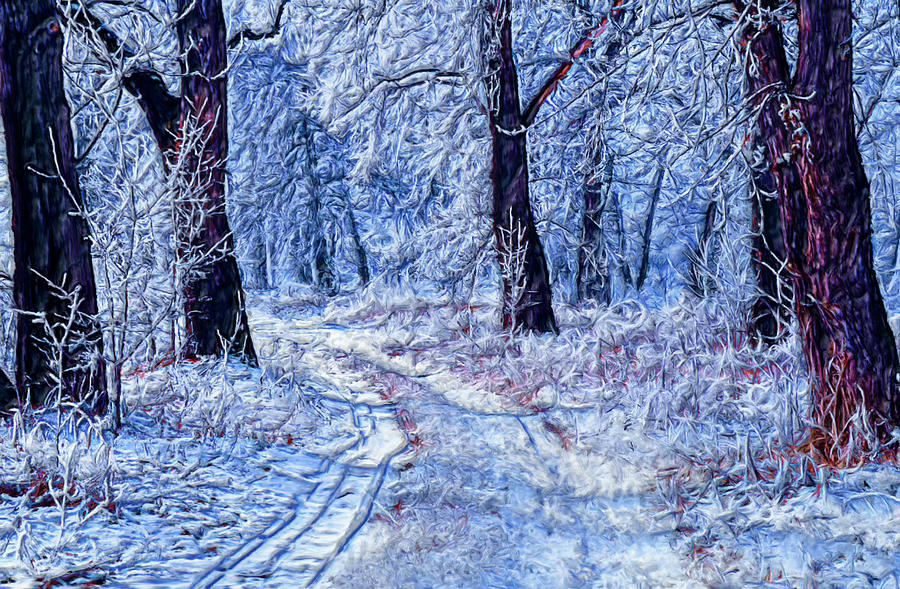 Tree Painting - Winter Wonder Land by Bruce Nutting
