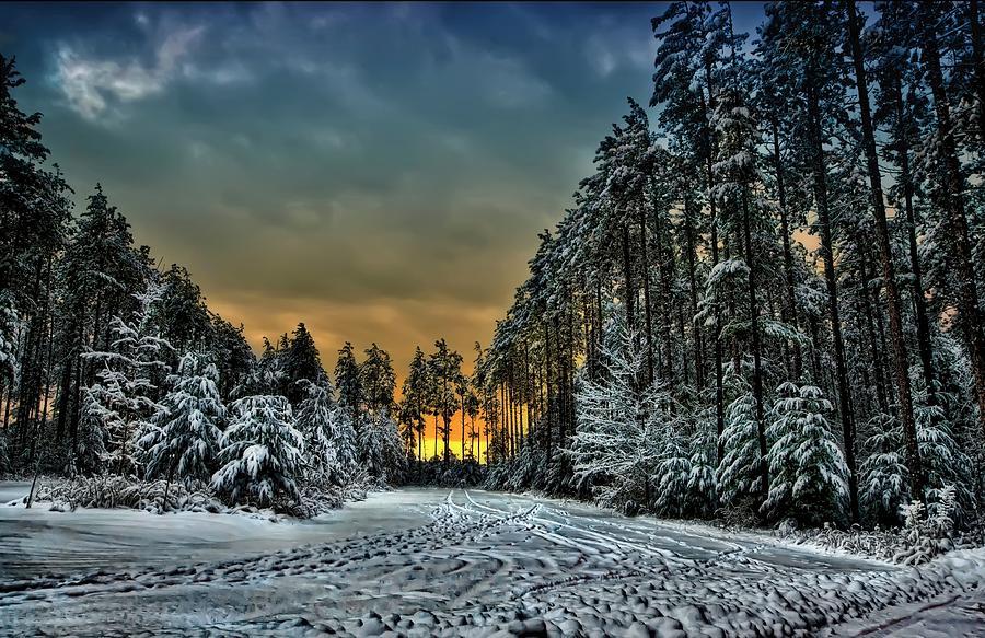 Chilly Photograph - Winter Wonderland by Jeff S PhotoArt