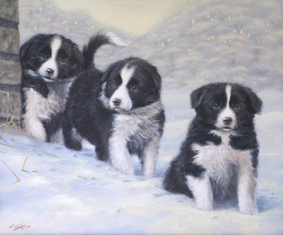 Border Collie Painting - Winter Wonderland by John Silver