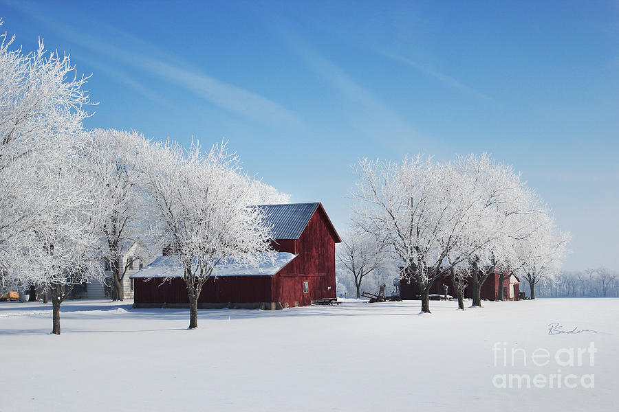 Winter Wonderland Red Barn Photograph By Robyn Saunders