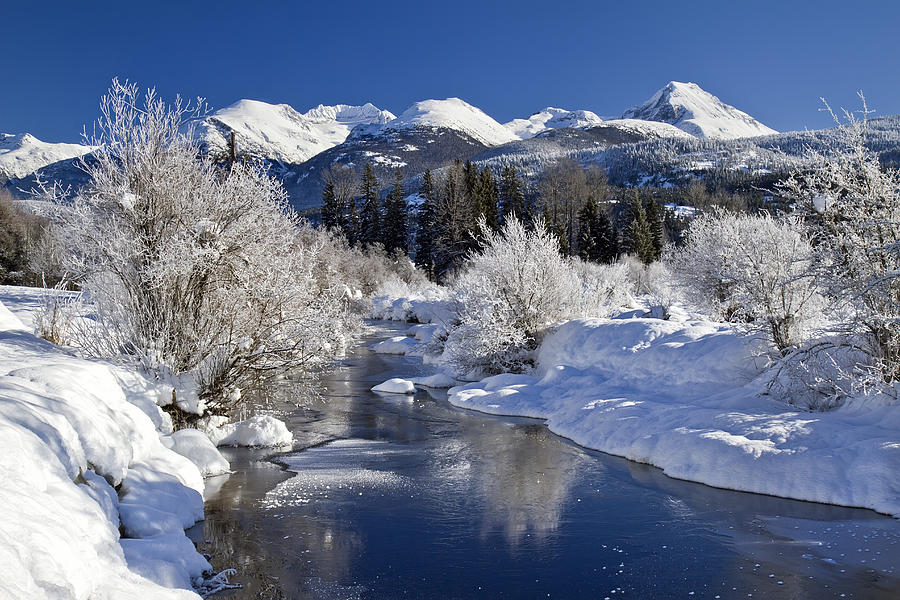 Winter Wonderland Whistler B.c Photograph