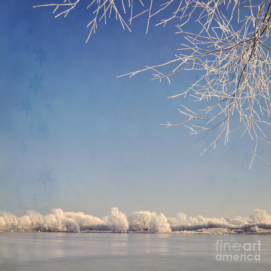 Blue Sky Photograph - Winter Wonderland With Snowflakes Decoration. by Lyn Randle