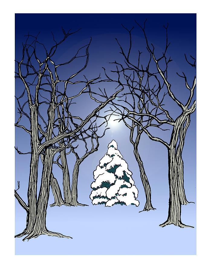 Winter Woods 3 by David Burkart