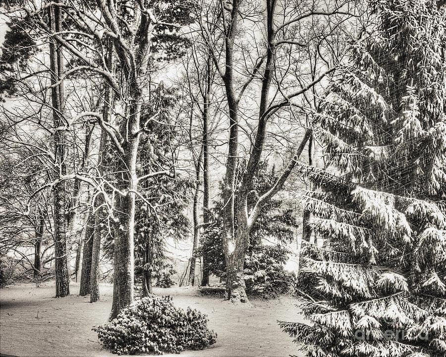 Bavaria Photograph - Winter Zauber 03 by Edmund Nagele