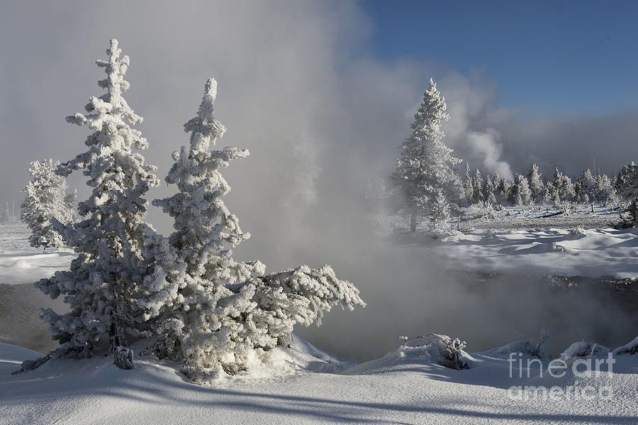 Landscapes Photograph - Winters Glory - Yellowstone National Park by Sandra Bronstein