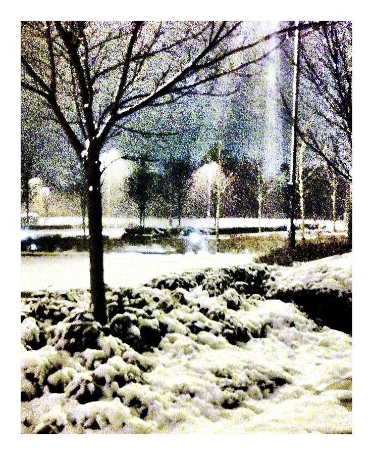 Winter Photograph - Winters Light by Andrew Allsopp