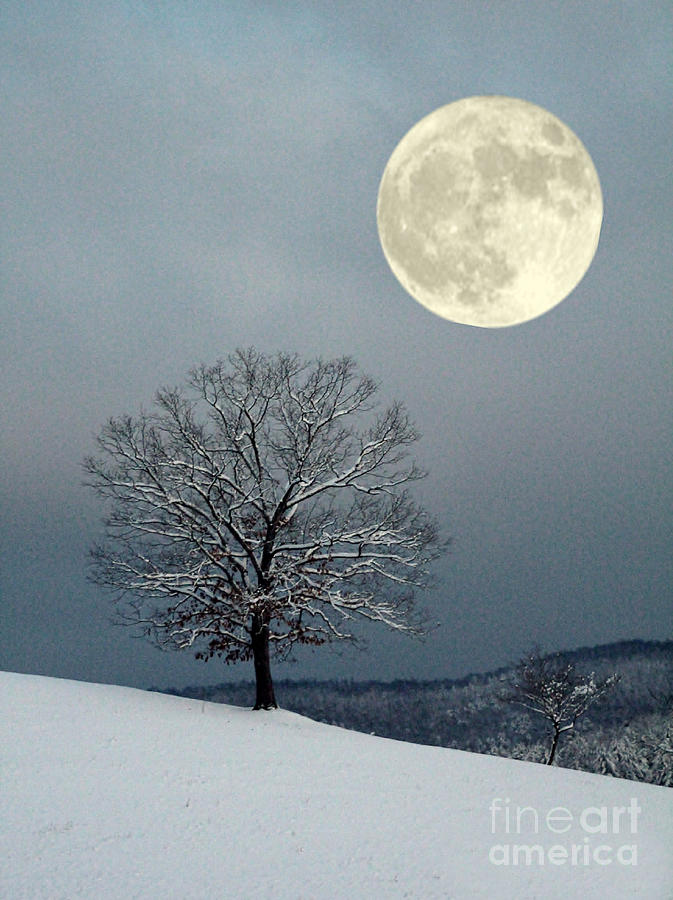 Moon Photograph - Winters Moon by Laurinda Bowling