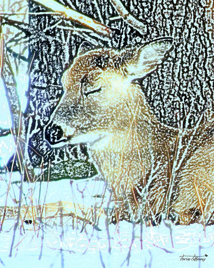 Digital Painting Digital Art - Winters Nap by Torie Tiffany