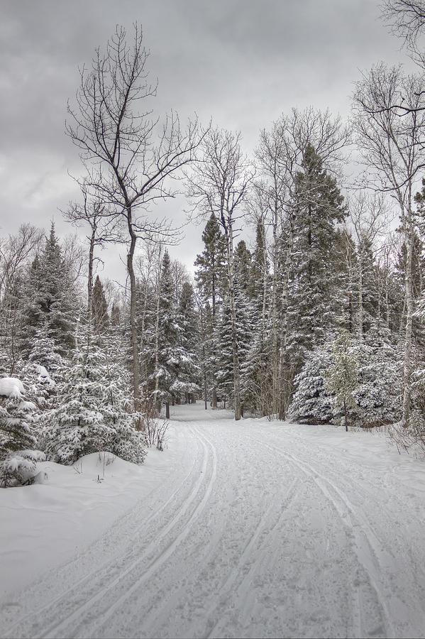 Snowscape Photograph - Winters Path by Linda Ryma