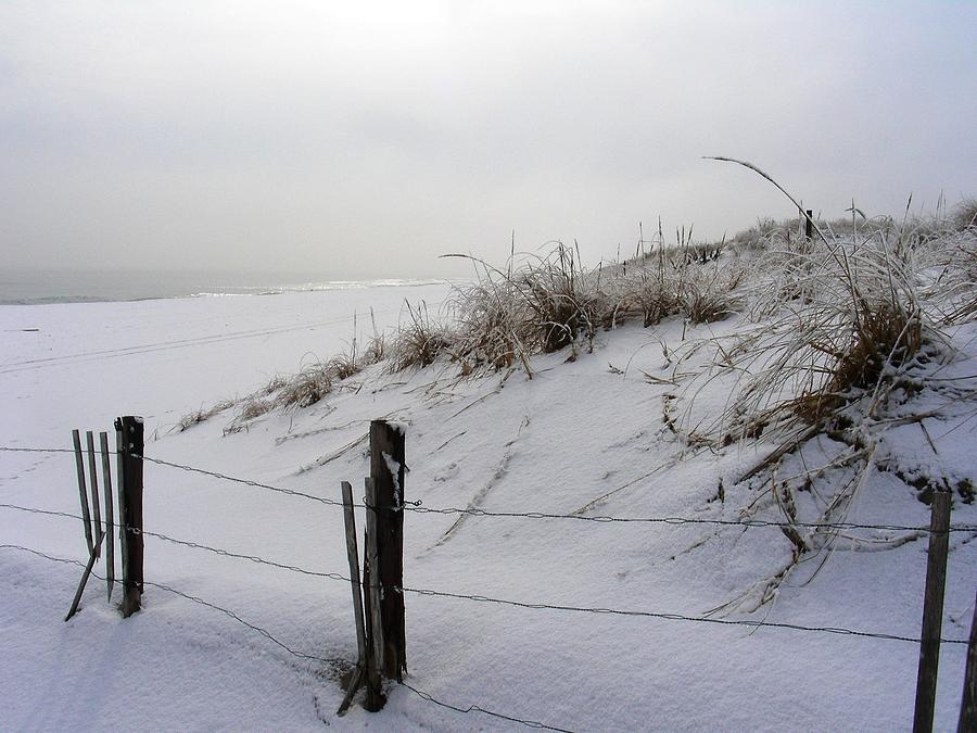 Island Beach State Park Photograph - Winters Snow At Island Beach State Park by Vincent DeLucia