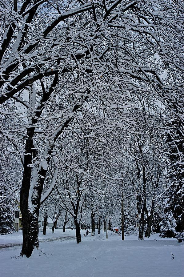 Shoveling Photograph - Winters Work by Joseph Yarbrough
