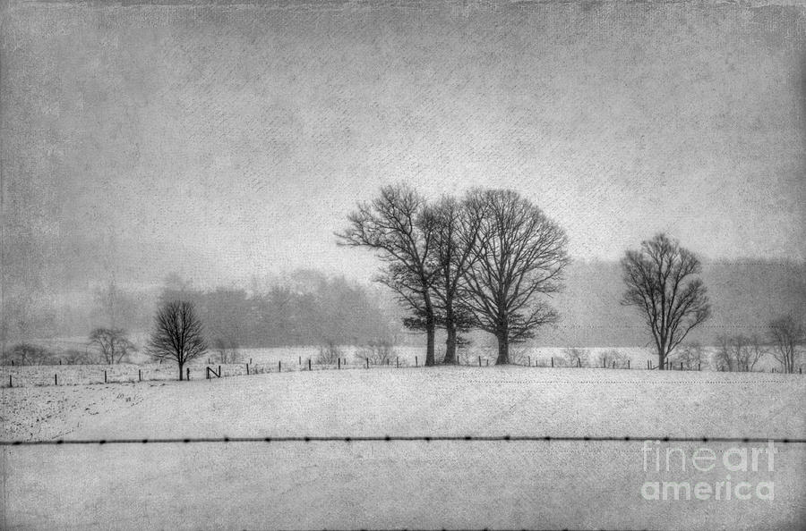 Winter Scene Photograph - Wintry Scene by Dan Friend