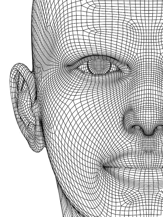 Wireframe Head Photograph by Alfred Pasieka