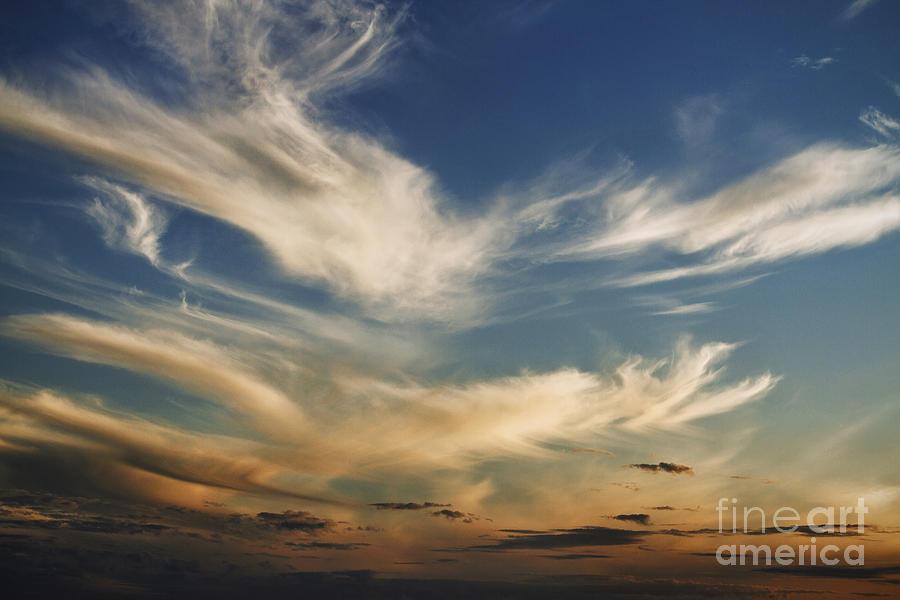Cloud Photograph - Wisp by Andrew Paranavitana