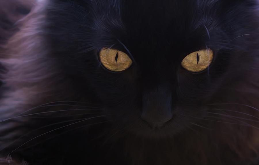 Cat Digital Art - Witchery by Hazel Billingsley