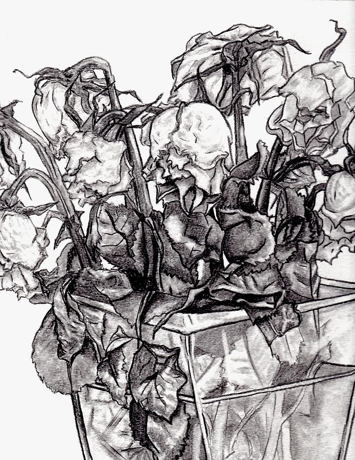 Withering Drawing - Withering Roses 2012 by Blake Grigorian