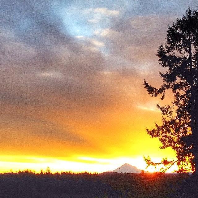 Sunshine Photograph - Woke Up To The Most Beautiful Sunrise by Blenda Studio