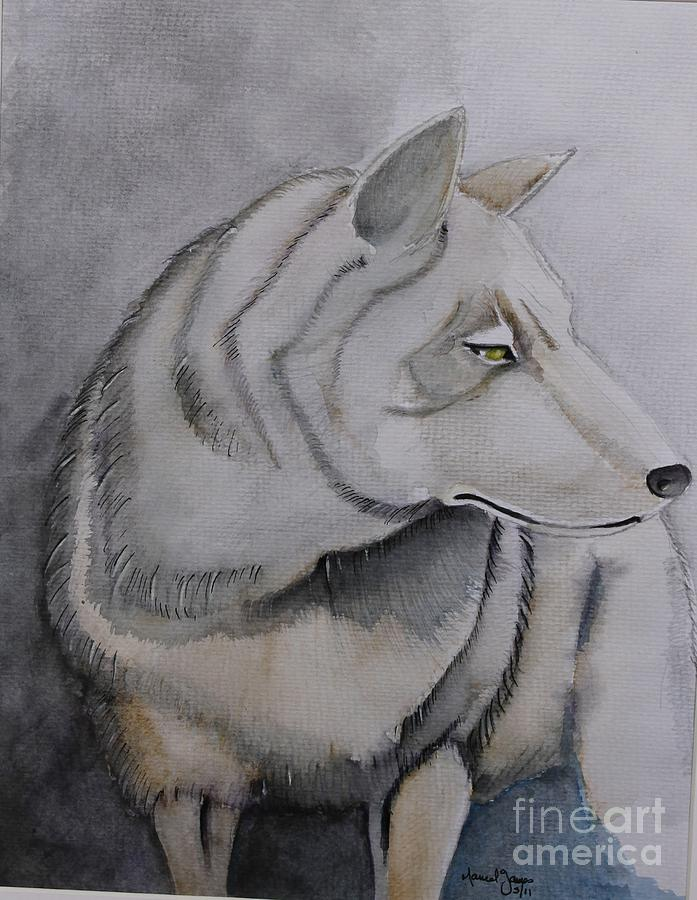 Animal Drawing - Wolf by Grant Mansel-James