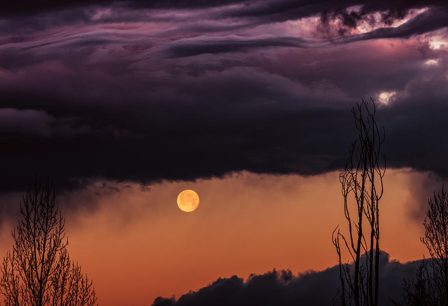 Sedona Photograph - Wolf Moon by Roger Chenery