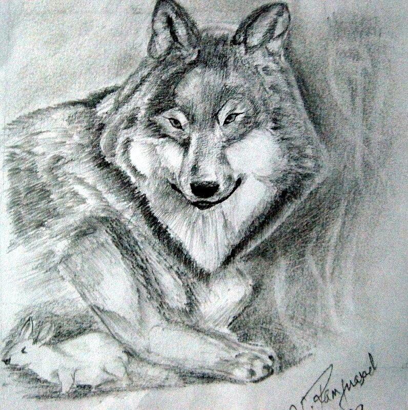 Drawing Drawing - Wolf N Rabbit by Ram Prasad
